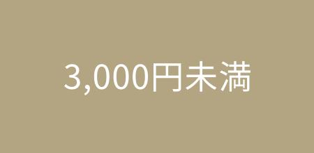 3,000円未満