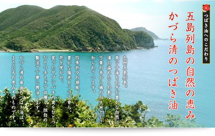 五島列島の自然の恵み かづら清のつばき油