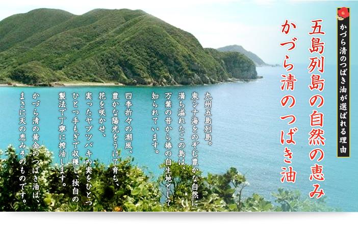 [かづら清のつばき油が選ばれる理由]五島列島の自然の恵み かづら清のつばき油